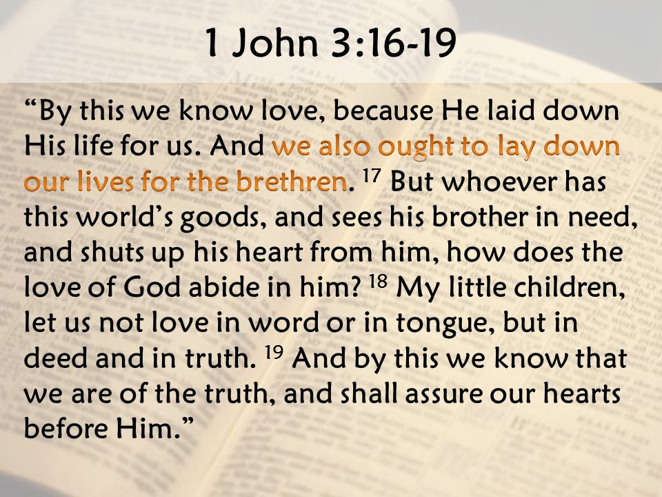 Image result for 1 John 3:16-19